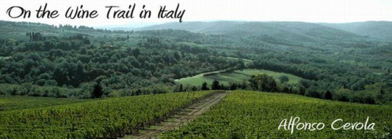 Alfonso Cevola - On the Wine Trail in Italy